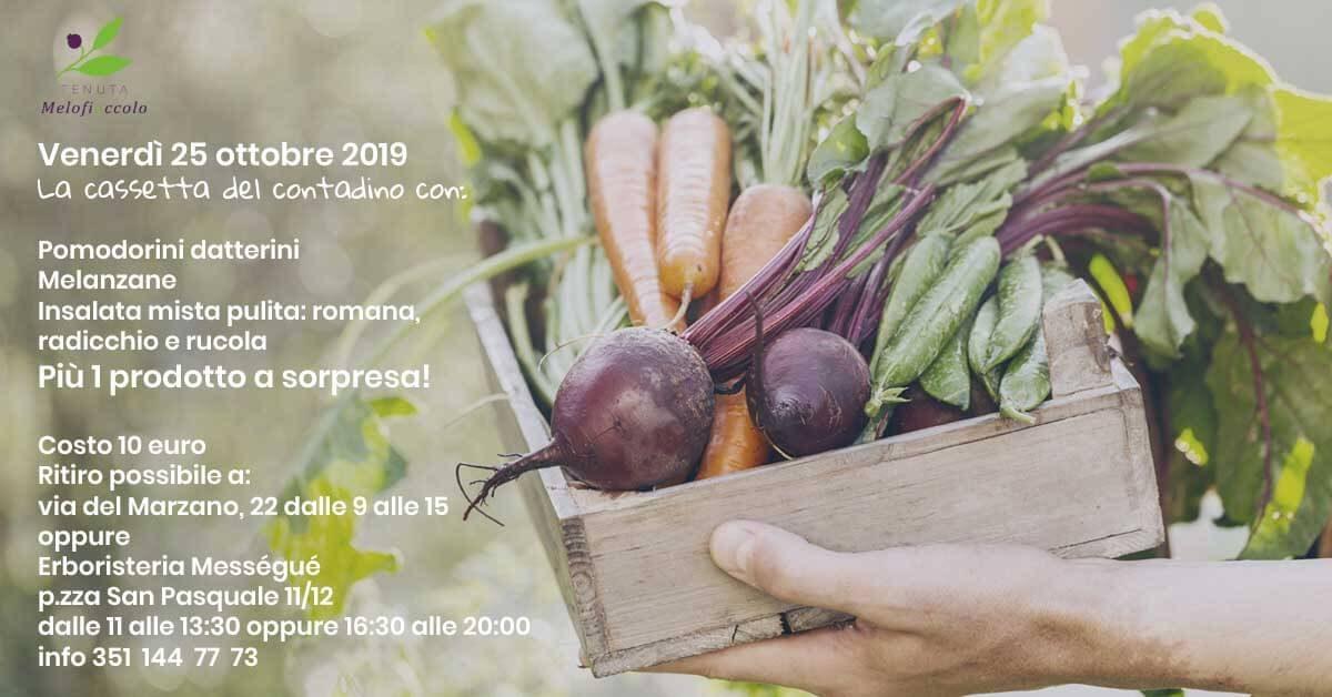 l'immagine mostra una cassetta di frutta e verdura che si vende alla tenuta melofioccolo ogni settimana
