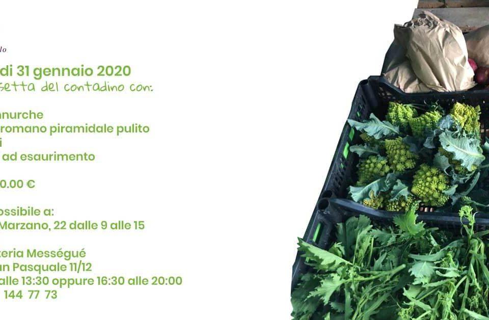 Cassetta del contadino tenuta melofioccolo 31 gennaio 2020