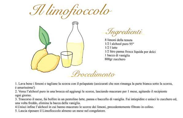 L'immagine descrive la ricetta del limoncello fatta con i limoni della tenuta melofioccolo